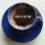 SIBOと胆汁酸